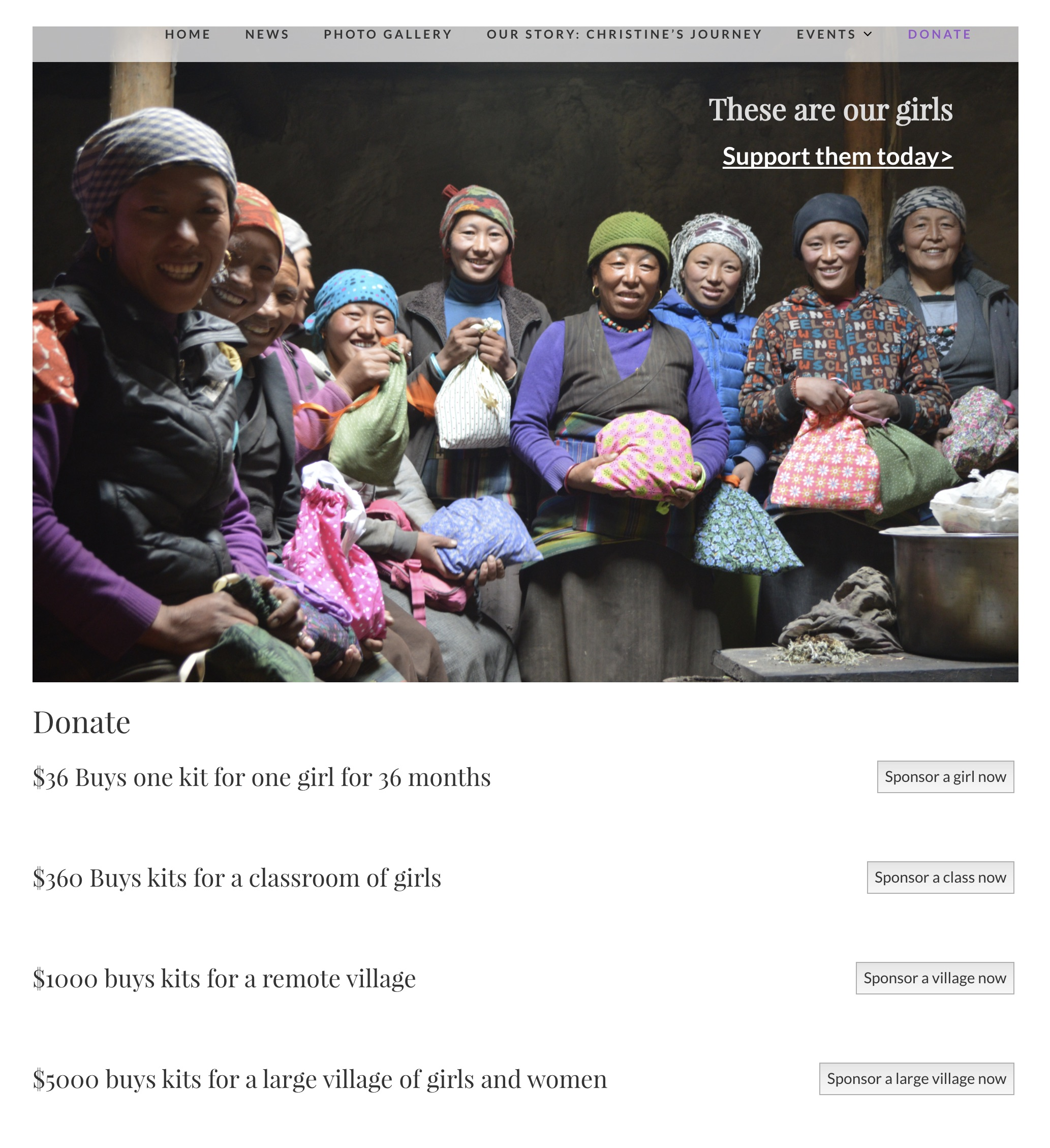 Women to Be website donation page image